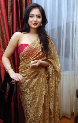 Nikisha Patel Hot Transparent Saree Photos