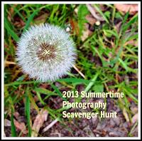 2013 Scavenger Hunt