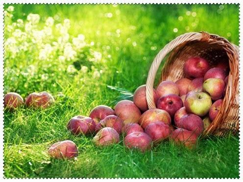 obuoliu nauda