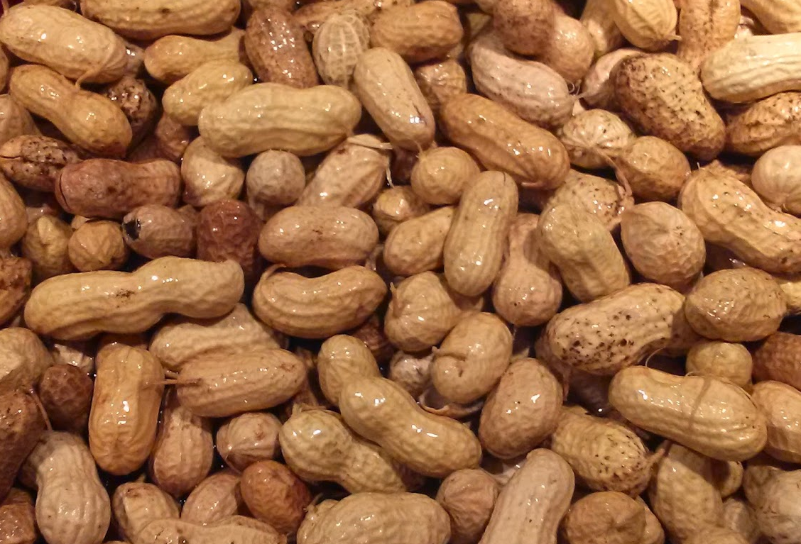 Jumbo Virginia Peanuts