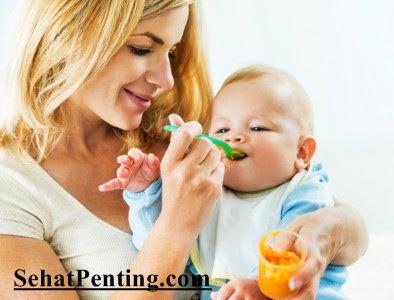 Aneka Buah Untuk Bayi