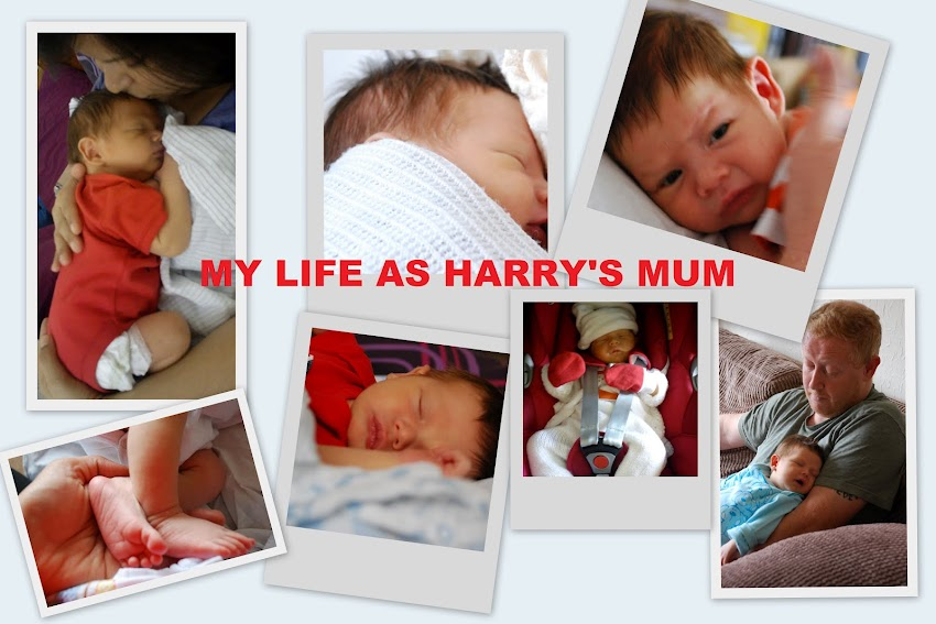 My life as Harry's mum