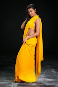 Neelam Upadhyay photos in Yellow saree from Action-thumbnail-10
