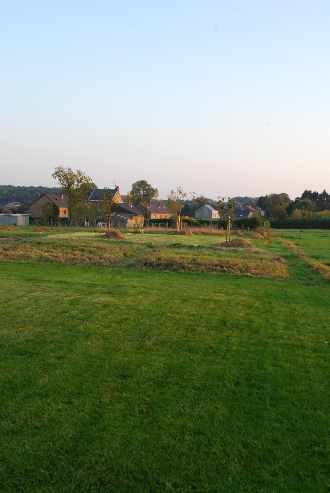 jardin prairie fleurie verger septembre 2011. Black Bedroom Furniture Sets. Home Design Ideas