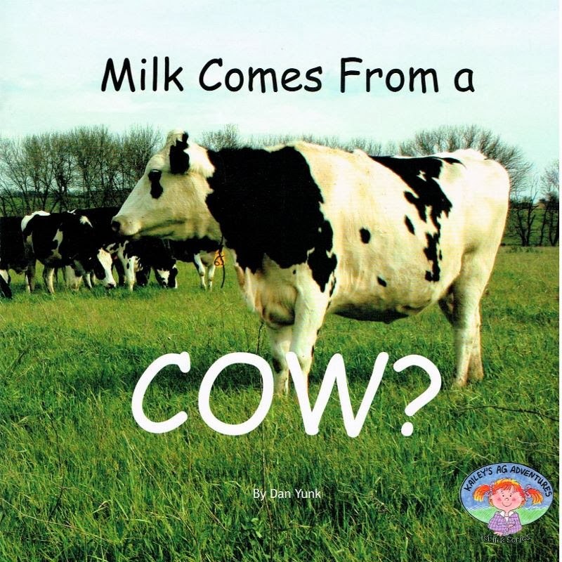Cow Milk Farm Milk Comes From a Cow