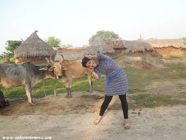 Anki on the move bihar rural places videos for Il fico d india rural chic