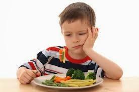 kurang selera makan