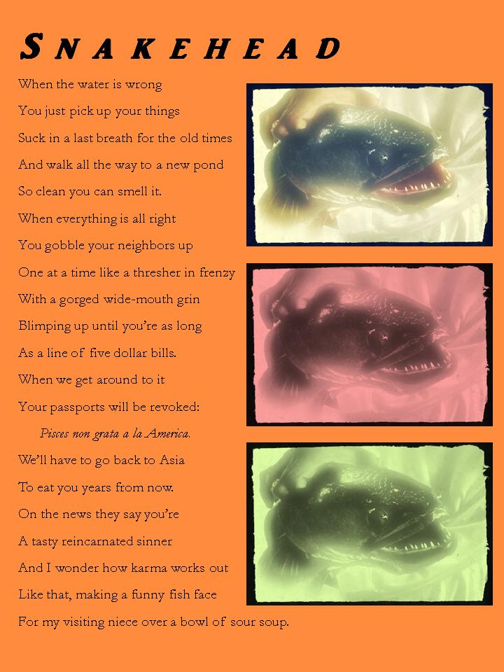 Board Member Poem   just b.CAUSE