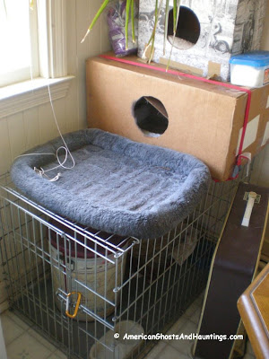 Poltergeist activity has been seen around this pet cage on several occasions.  It is as if some invisible force is trying to get out.
