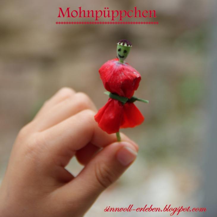 Mohnblumen--Püppchen