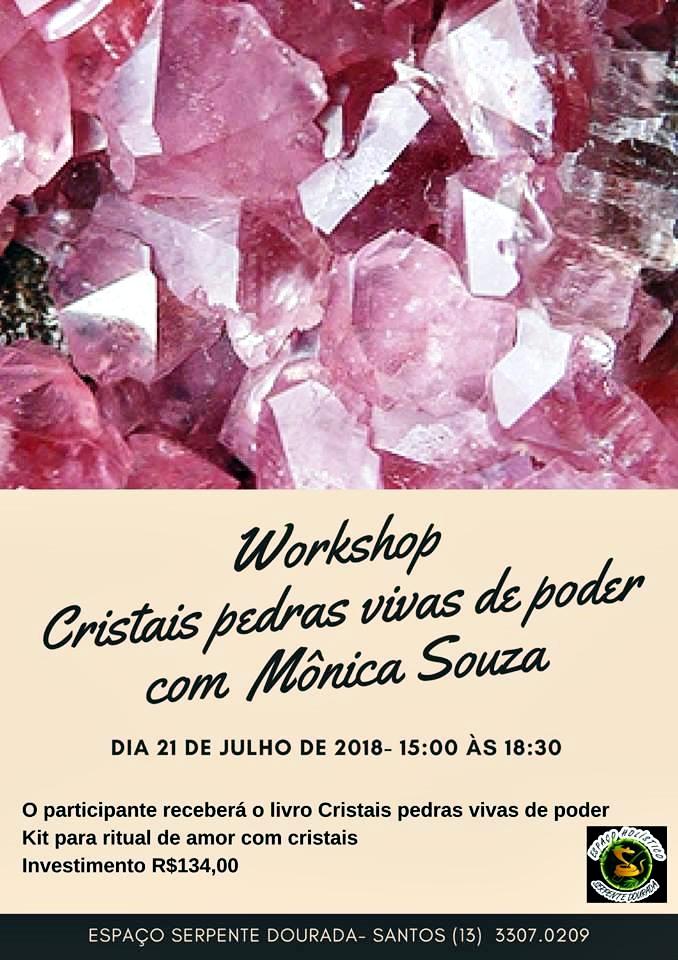 Workshop em Santos