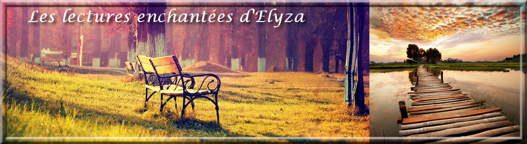 Les lectures enchantées d'Elyza