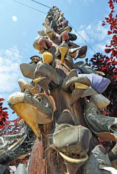 one dusty track route 66 high heeled shoe tree