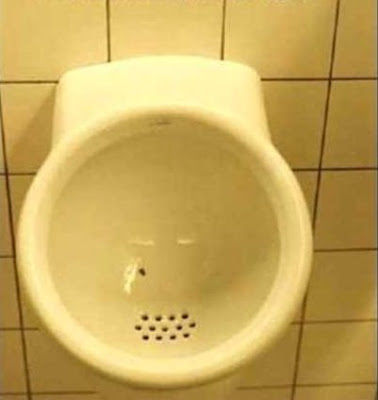 Urinal with a fly in the bowl Schiphol Airport