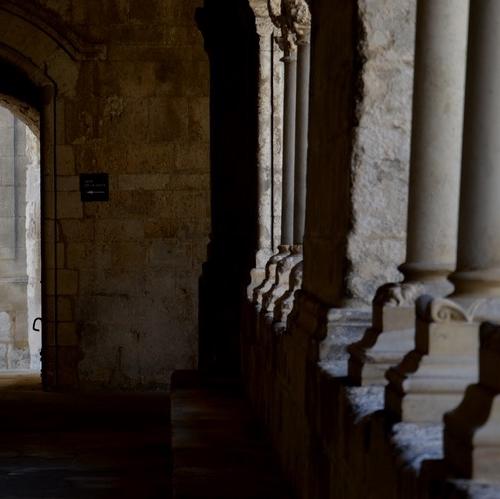 1 Le Cloître - Abbaye de Montmajour