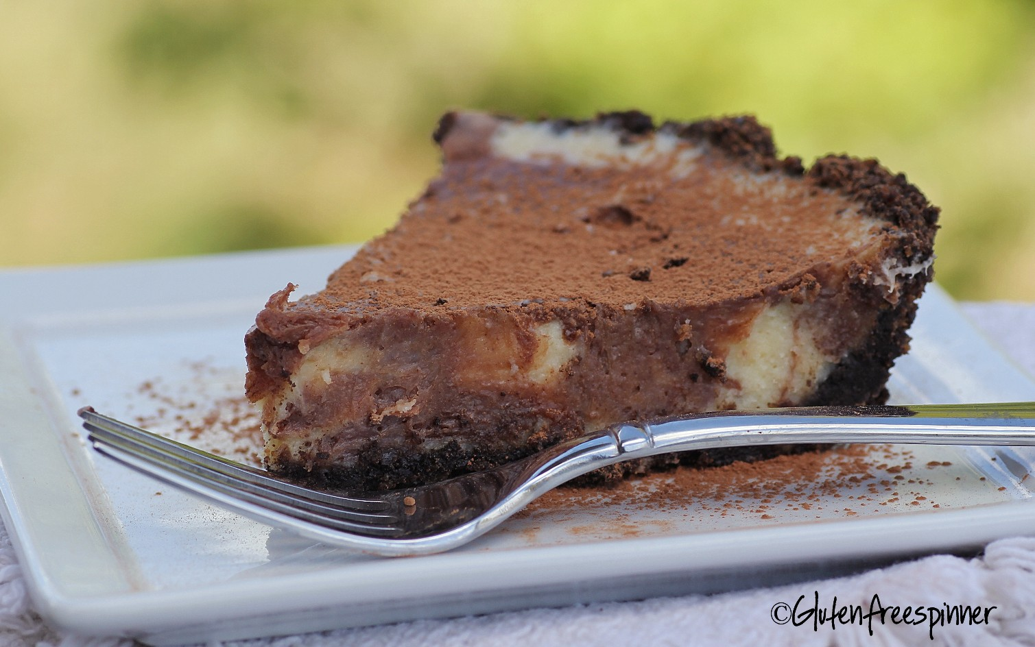 Marble Cheesecake with Chocolate Ginger Crust