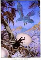 Fábula del Águila y el Escarabajo fábula infantil de Esopo con moraleja