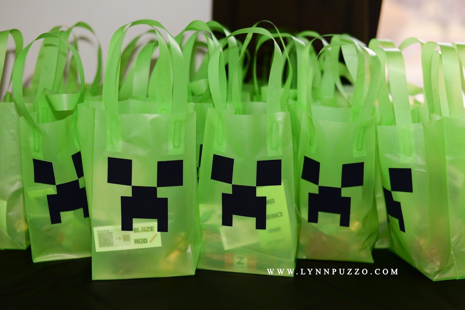 Lynn Puzzo Photography: Aiden's 8th Birthday Party: Minecraft ...