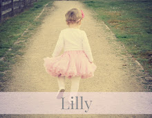 Welcome To Lilly & Me!