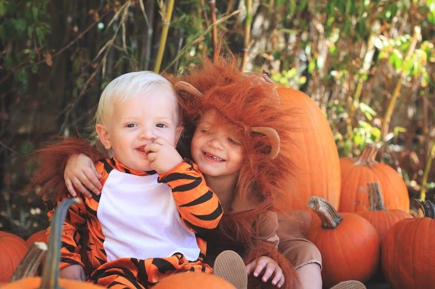 Halloween Weekend: Around Town Part Two