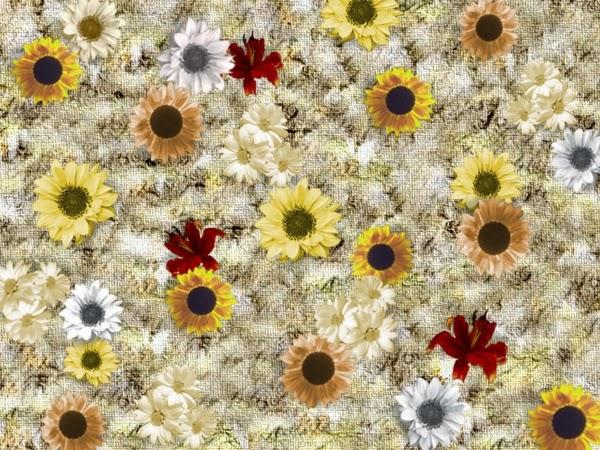 Streublumen auf verwischtem Hintergrund