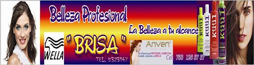 "BELLEZA PROFESIONAL ""BRISA"""