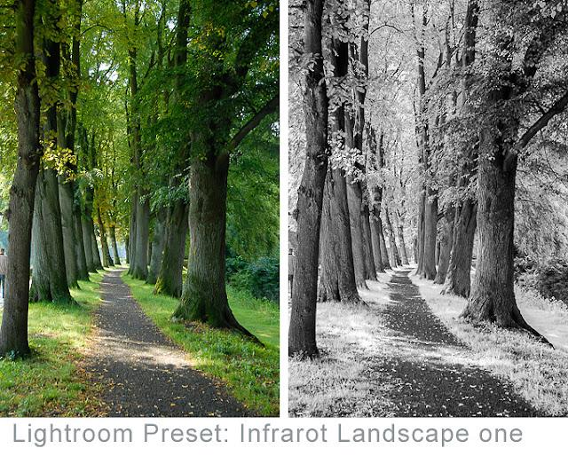 Kostenloses Preset Lightroom Infrarot Landscape