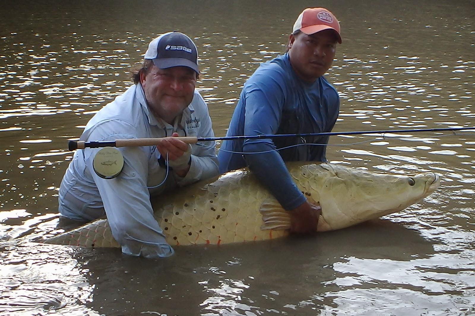 International fishing news guyana caught world record for Fly fishing news