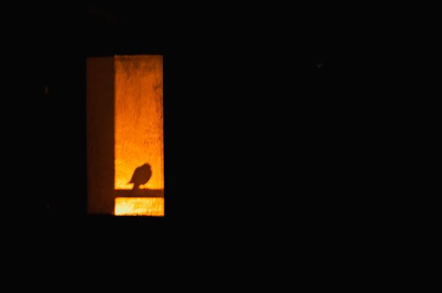 Solitude…