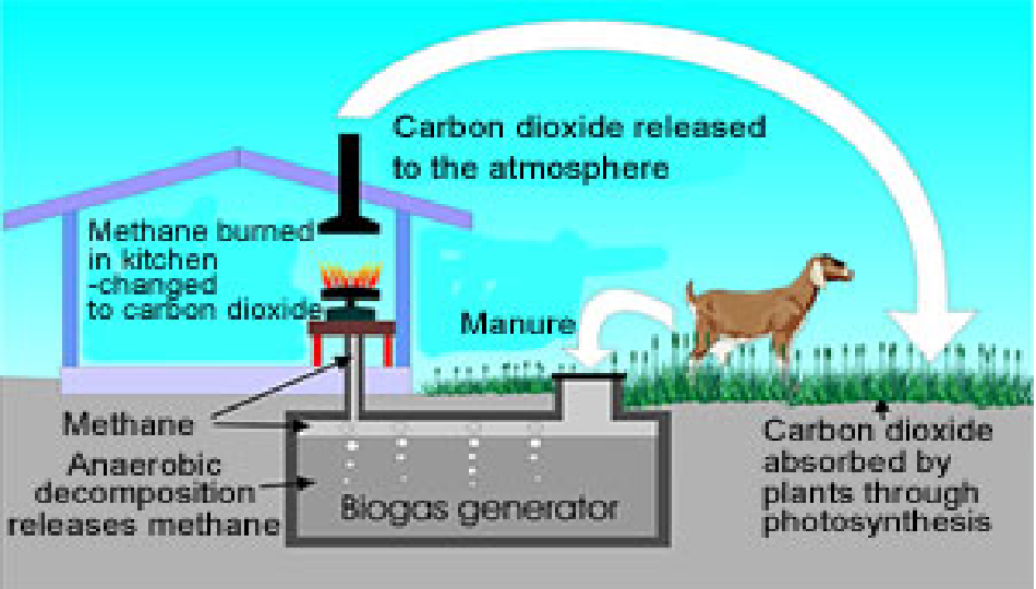 essay on gobar gas Biogas in india has been traditionally based on dairy manure as feed stock and these gobar gas plants have been in operation for a long period of time.