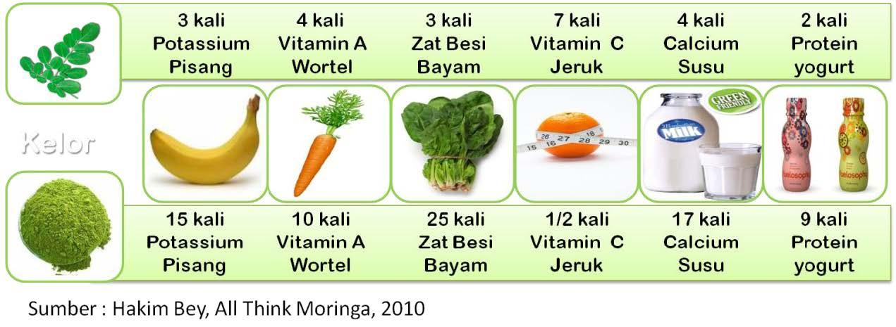 Kandungan Nutrisi Daun Kelor