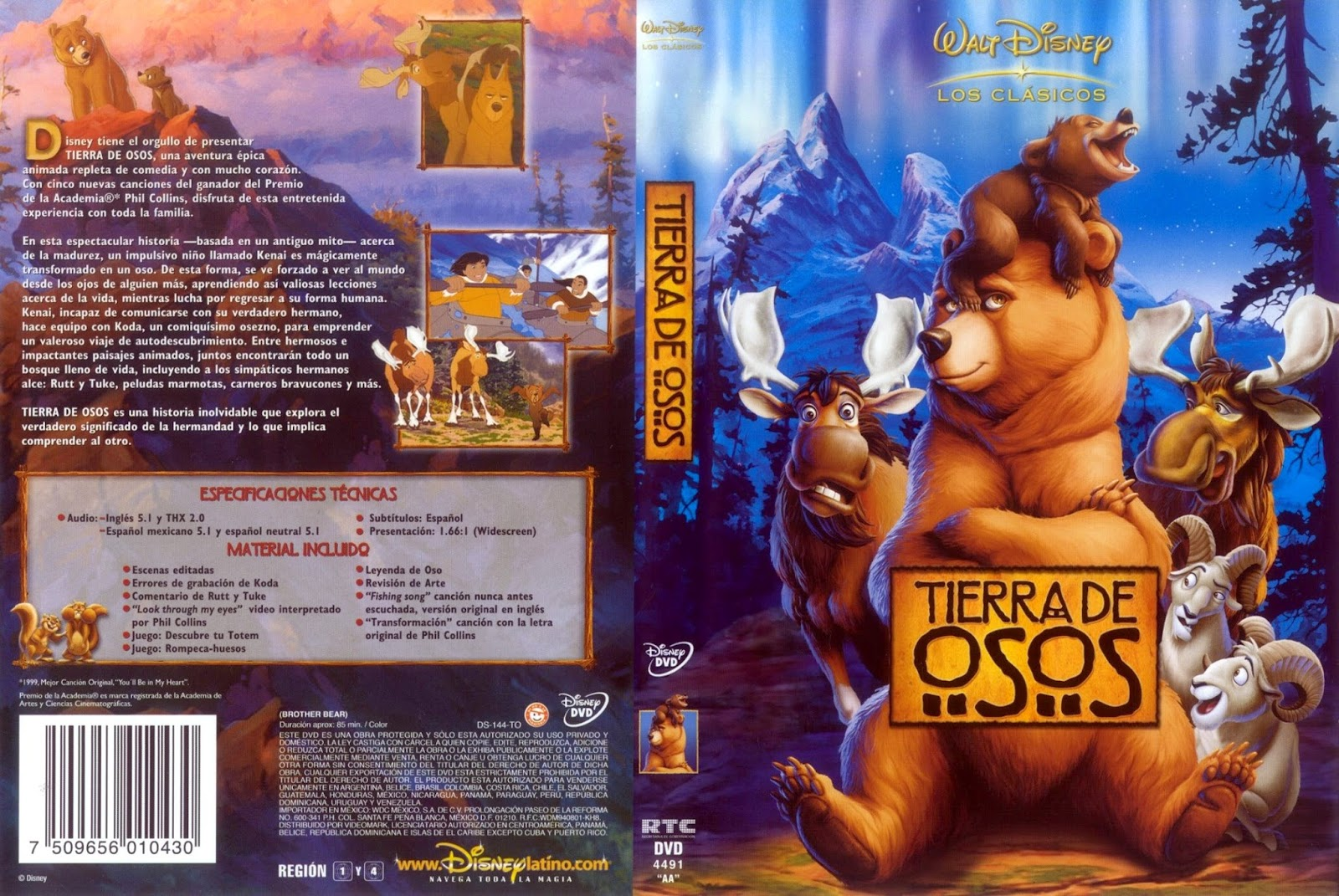 Hermano Oso DVD