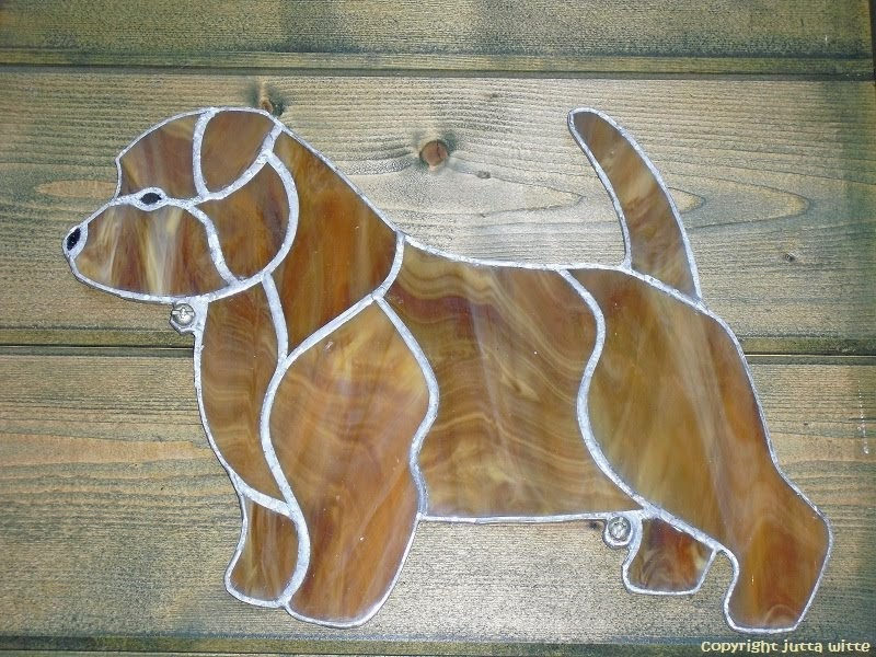 Wetterfester Norfolk Terrier