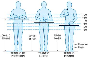 Temas de ergonom a desde venezuela junio 2011 for Medidas antropometricas del cuerpo humano