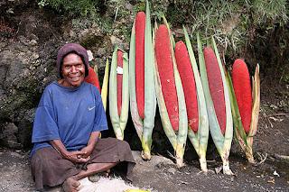 peace-on-earth.org, Marita (or kuansu in Papuan, or Pandanus Conoideus in Latin) Sold as Fruit