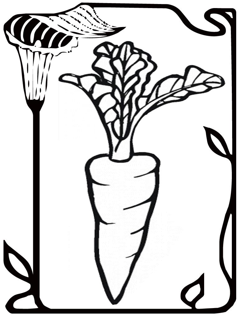 seed coloring pages - photo#23