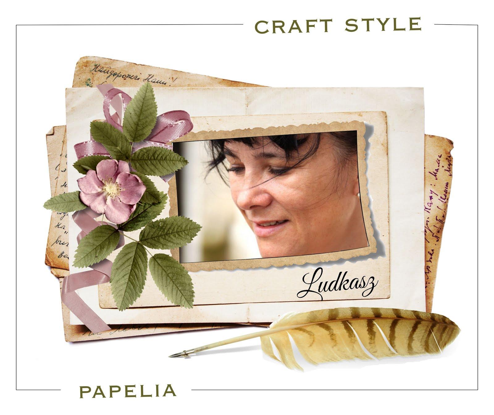 Inspirowałam 3 lata w DT Papelii i Dt Craft Style