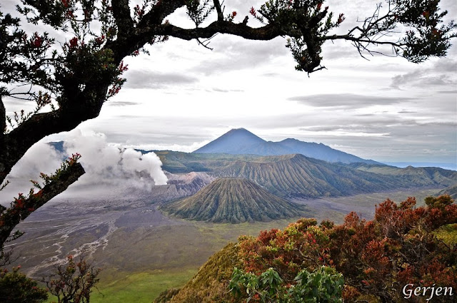 bromo best vacation
