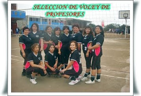 SELECCION DE VOLEY