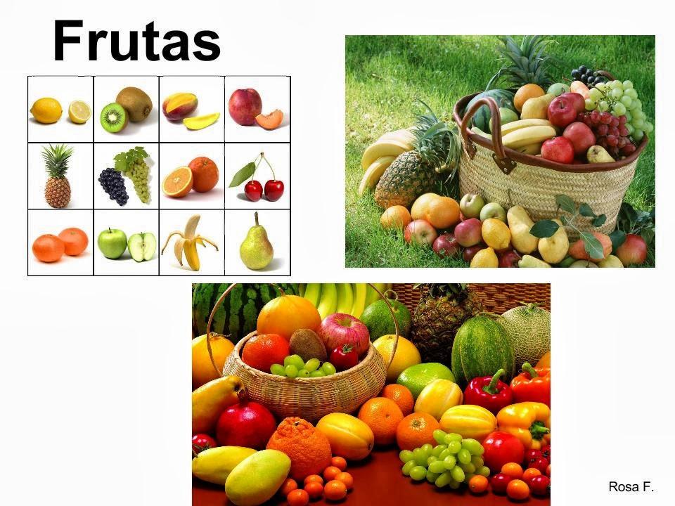 maestra de primaria alimentos de origen animal y de origen vegetal Car