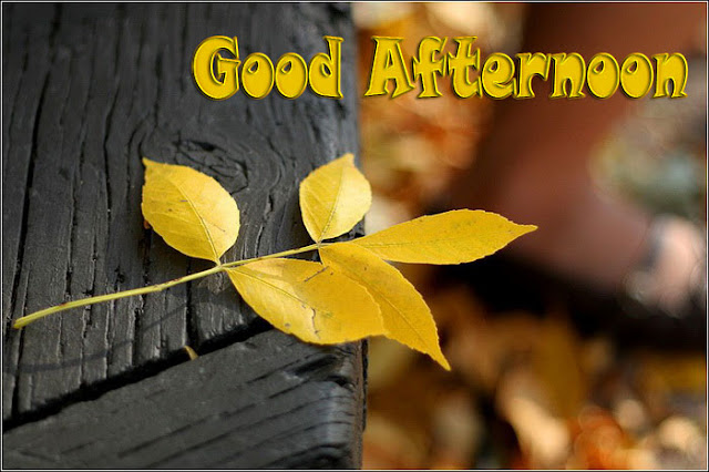 Good Afternoon Graphics 2015