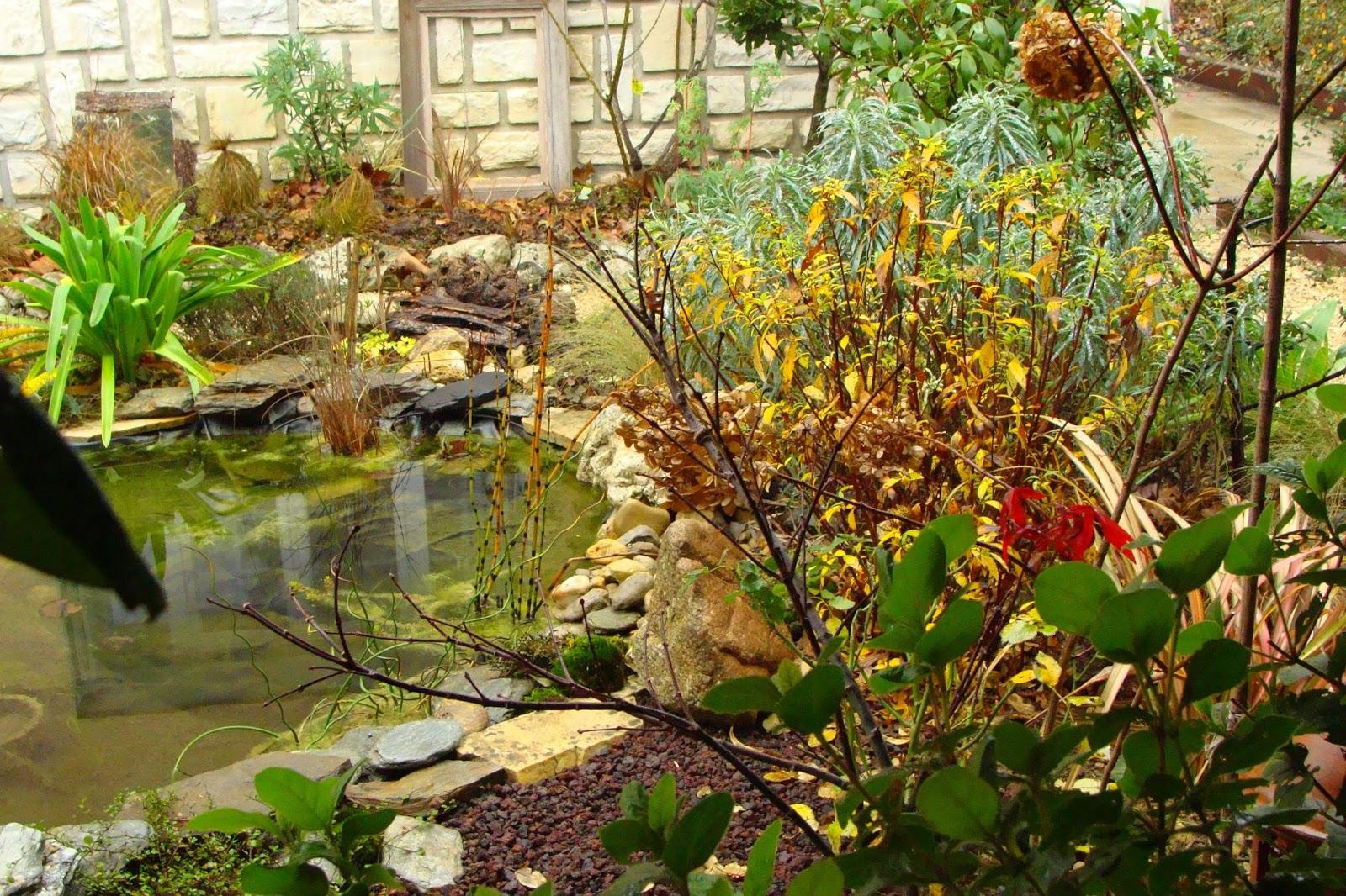 Jardine et ris vaut mieux avoir un po le bois qu - A poil dans son jardin ...