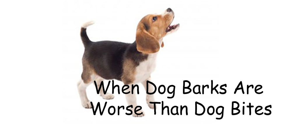When Dog Barks Are Worse Than Dog Bites