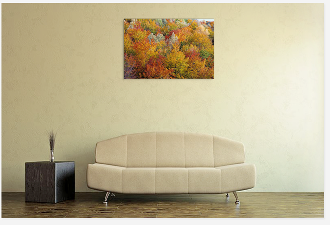 Decoration with Art picture,autumn picture,buy art photo