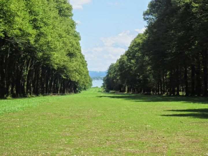 Herrenchiemsee,
