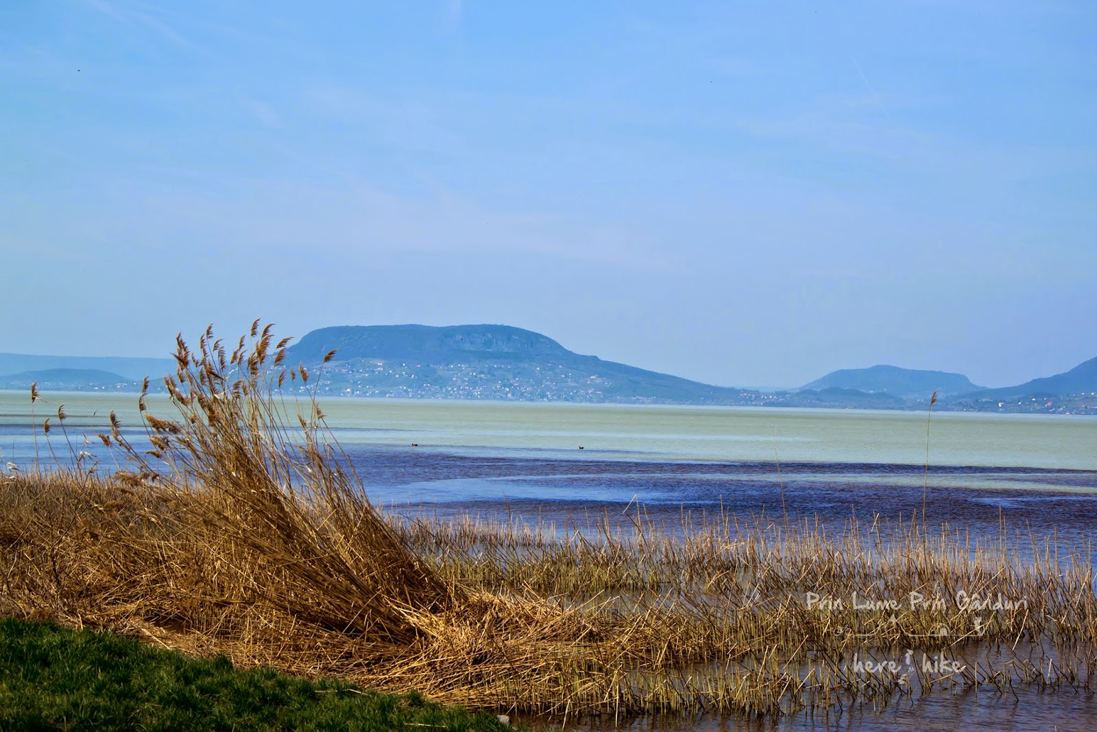 balaton-lake