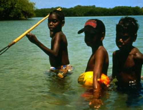 yolngu boy vs personal culture Vs adulthood task: watch the movie yolngu boy and note down all scenes in which you can observe lorrpu, milika and botj behaving a) like children b) like adults c) both.