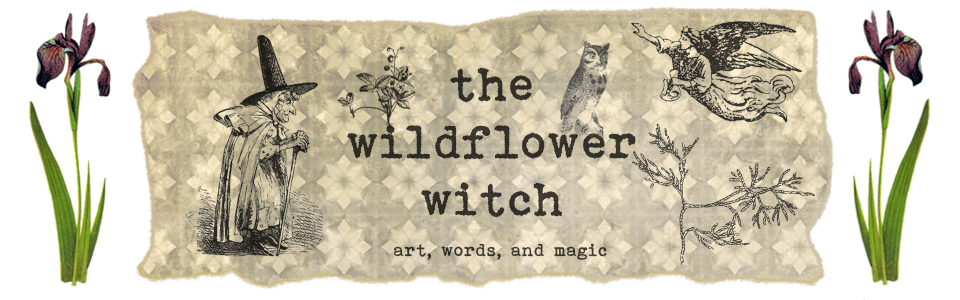 The Wildflower Witch