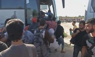 Kroacia hap sërish kufirin me Serbinë
