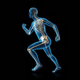 Los Huesos y el Ejercicio